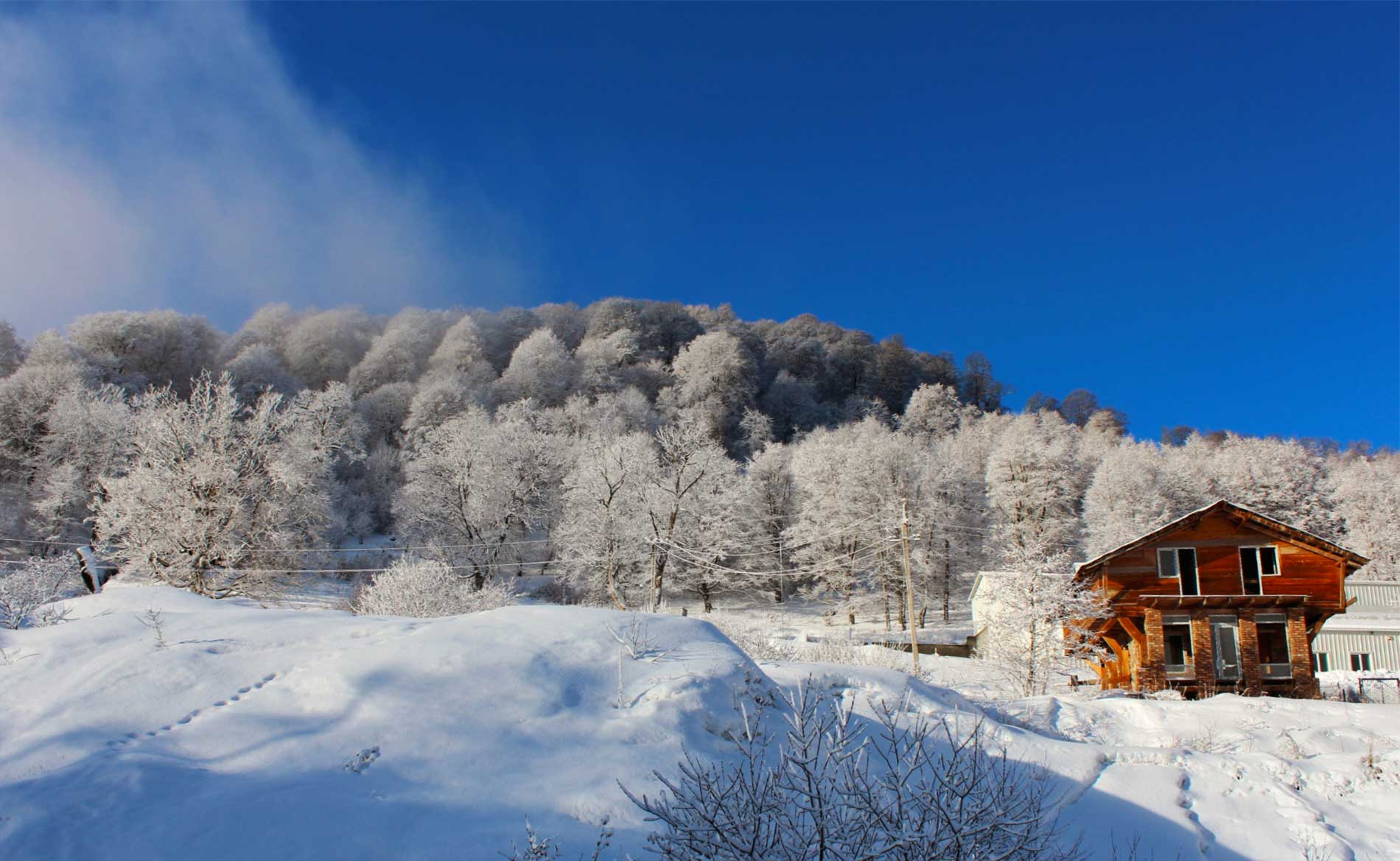 Winter In Georgia And Ski Resorts Best Destinations And Tips