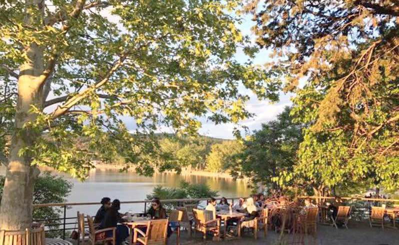 Summer Cafes in Tbilisi 1-min